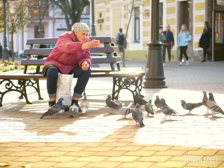 Женщина кормит голубей в Бресте
